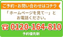 0120164810